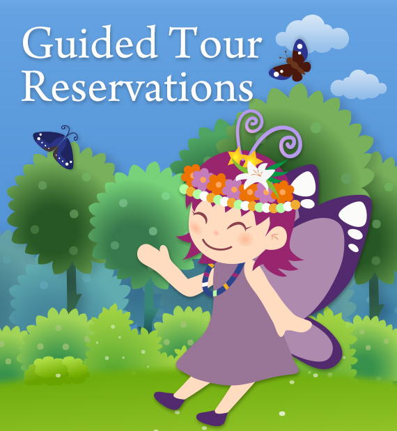 Guided Tour Reservation