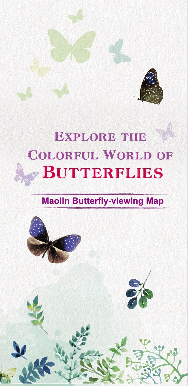 Explore the Colorful World of BUTTERFLIES - Maolin Butterfly-viewing Map